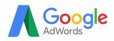 adwords-2-229x82